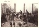 La storia della sezione Avis di Cesate